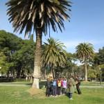Compañía de María - 13 marzo 2015 - Parque José Antonio Labordeta (1)