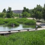 La Almozara - 12 mayo 2015 - Parque del Agua