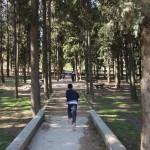 Montessori - 8 abril 2015 - Parque José Antonio Labordeta (1)