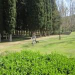 IES Tiempos Modernos - 17 marzo 2016 - Parque Grande