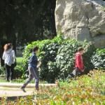 Avempace - 6 abril 2016 - Parque Grande