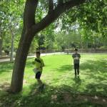 Gascón y Marín - 19 mayo 2016 - Parque Bruil